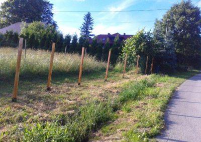 ogrodzenie siatka zgrzewana