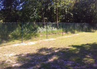 ogrodzenie siatkowe zielone